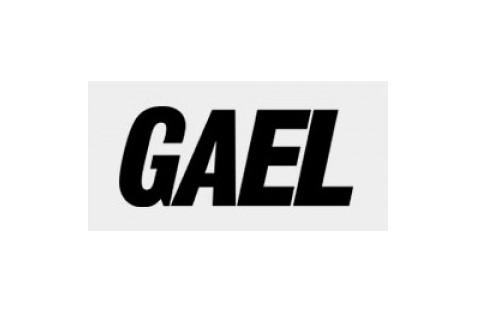Digital-gael